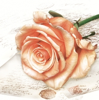 Servietten 33x33 cm - Salmon Rose