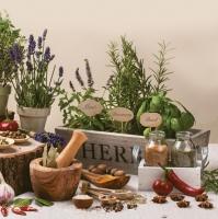Servietten 33x33 cm - Aromatic Herbs