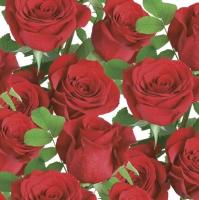 Servietten 33x33 cm - Classic Red Roses