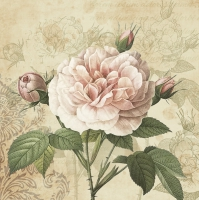 Servietten 33x33 cm - Vintage Rose with Buds