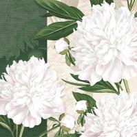 Servietten 33x33 cm - Dewed White Peonies