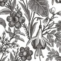 Servietten 33x33 cm - Floral Illustration Black
