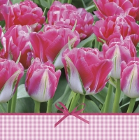 Servietten 33x33 cm - Pink Tulips Time