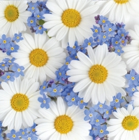 Servietten 33x33 cm - Daisies and Forget-me-nots