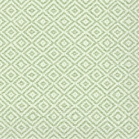 100 Tissue Dinner Servietten - Lagos-Basis (grün)