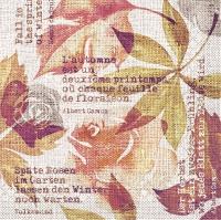Tissue Servietten 40x40 cm - Gunnar  (terrakotta)