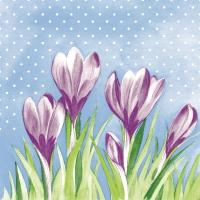 100 Tissue Dinner Servietten - Fein (violett/grün)