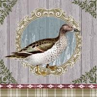 Servietten 33x33 cm - Duck Portrait