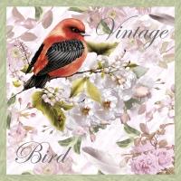 Servietten 33x33 cm - Vintage Bird
