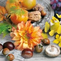 Servietten 33x33 cm - Herbstliches Stilleben