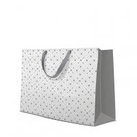 10 Geschenktaschen - Dots Texture  silver horizontal