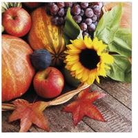 Servietten 33x33 cm - Autumn Treasures