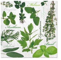 Servietten 33x33 cm - Herbal Taste