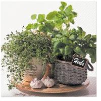 Servietten 33x33 cm - Flavor of Herbs