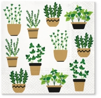 Servietten 33x33 cm - Herbs in Pot