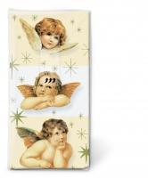 Taschentücher - TT Sweet angels