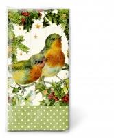 Taschentücher Robins in green