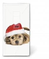 Taschentücher Sweet Santa dog