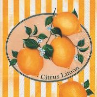 Cocktail Servietten Citrus Limon