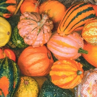 Servietten 25x25 cm - Pumpkin decoration