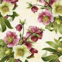 Servietten 25x25 cm - Easter rose