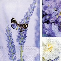 Servietten 25x25 cm - Dream of lavender