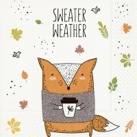 Servietten 25x25 cm - Pullover-Wetter
