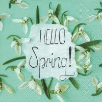 Lunch Servietten Hello spring