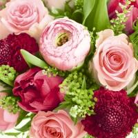 Servietten 33x33 cm - Eine Fülle von Blumen