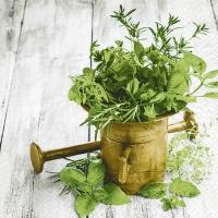 Servietten 33x33 cm - Variety of herbs