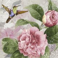 Servietten 33x33 cm - Hummingbird dance
