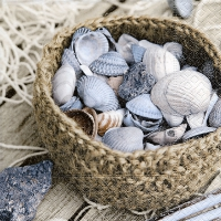 Servietten 33x33 cm - Basket of shells