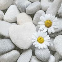 Servietten 33x33 cm - Gänseblümchen auf Steinen