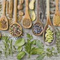 Lunch Servietten Spices & herbs