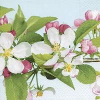 Servietten 33x33 cm - Apple blossom