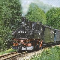 Servietten 33x33 cm - Dampfzug