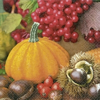 Lunch Servietten Pumpkin & fruits