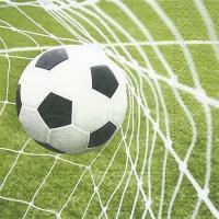 Servietten 33x33 cm - Special goal