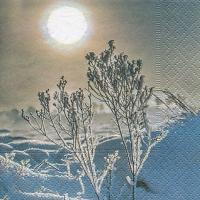 Servietten 25x25 cm - Ein Wintertag