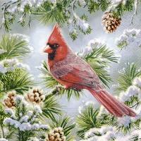 Servietten 25x25 cm - Roter Kardinal