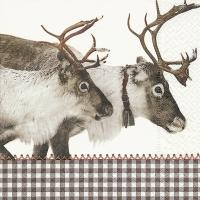 Lunch Servietten Reindeer