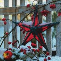 Servietten 33x33 cm - Advent wishes