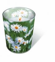 Glaskerze - Voller Gänseblümchen