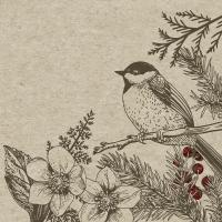 Servietten 25x25 cm - Botanische Weihnachten