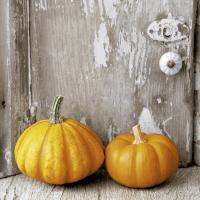Servietten 24x24 cm - Two pumpkins