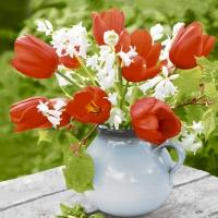 Servietten 25x25 cm - Red tulips