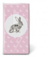 Taschentücher - Portrait of rabbit