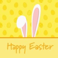 Servietten 24x24 cm - Bunny Ears