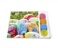 Combibox  - Vibrant Eggs