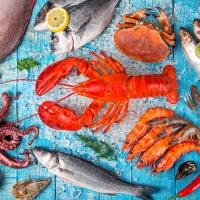 Servietten 33x33 cm - Seafood